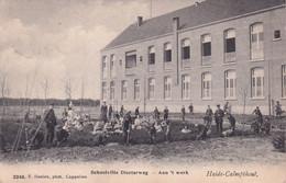 KALMTHOUT / DIESTERWEG SCHOOLVILLA 1903 - Kalmthout