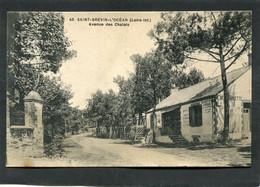 CPA - SAINT BREVIN L'OCEAN - Avenue Des Chalets, Animé - Saint-Brevin-l'Océan