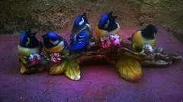 Groupe D'oiseaux Sur Une Branche - Capodimonte (ITA)