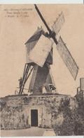 ERIGNE (49) - Vieux Moulin à Vent - N° 265 - - Altri Comuni