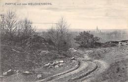 Partie Af Dem Welchenberg 1909 - Other