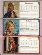 Calendrier De 1975 De Vedettes De Cès Années Là  4 Pages (voir Scans Pour Les  Noms) - Big : 1971-80
