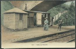 Halte De Walzin   Lau 19 - Dinant