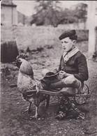 Enfant Sur Un Charrette Tirée Par Un Coq - Escenas & Paisajes