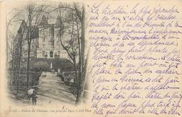 CPA 64 Pyrénées Atlantiques Pau Entrée Du Chateau Vue Prise Du Parc Précurseur 1900 - Pau