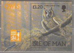 BIRDS ISLE OF MAN 1997 Owls Mi Bl 28 MNH (**) #22227 - Ohne Zuordnung