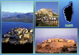 France > [20] [2B] Haute Corse > Souvenir De Calvi   / 91 - Calvi