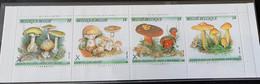 1991 - Postzegelboekje Natuur, Paddestoelen - Postfris/Mint - Unused Stamps