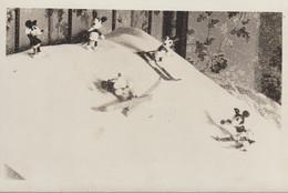 C.P.A. - PHOTO - MICKEY ET MINIE SUR LES SKIS AVEC LEURS CONGENERES - - Ohne Zuordnung