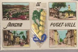 C.P. - PHOTO - SOUVENIR DE PUGET VILLE - MULTIVUES - MIMOSA - AZUR - 4 VUES - Otros Municipios
