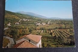 CP - CAVASO DEL TOMBA - Panorama Verso Il Monte Cesen E Fiume Piave - Otras Ciudades