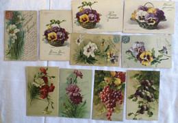 Lot De 10 Cartes -Fleurs -Fruits-Klein -490 Bis - Sin Clasificación