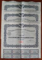 Lot De 3 Actions De 500 F Cinq Cents Francs Banque D'Alsace& De Lorraine . Strasbourg 1921 - Other
