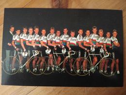 Cyclisme - Carte Publicitaire PDM : Le Groupe Avec DEGADO, KNETEMAN ... - Ciclismo