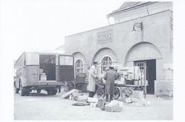 Zernez GR, Postauto, 1946 (réproduction); Autobus, Bus - GR Grisons