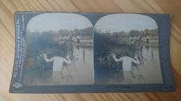 1900 - HOMME NU CACHE DANS L EAU DERRIERE LA VERDURE - PHOTO STEREO - Fotos Estereoscópicas