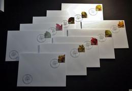 Belgie - Belgique 2012 - OBP - 4268/77 -  Plak Een Boomblad - 10 Enveloppe Gestempeld 16.09.2012 Temse - Used Stamps