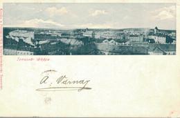 Roumanie , TEMESVAR , TIMISOARA ,Temesvar , Lâtkêpe .  CPA,  1-Janvier-1912 - Romania
