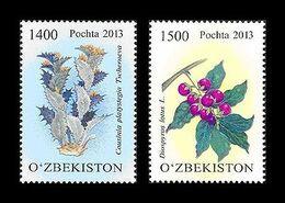 Uzbekistan 2013 Mih. 1062/63 Flora. Protected Plants. Cousinia Platystegia And Date-plum MNH ** - Uzbekistan