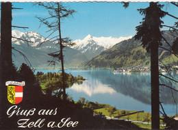 1358) GRUSS Aus ZELL Am SEE - Tolle ältere AK _ Hohen Tenn Imbachhorn Kitzsteinhorn - Zell Am See