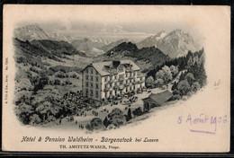 HOTEL ET PENSION WALDHEIM BURGENSTOCK BEI LUZERN - NW Nidwalden
