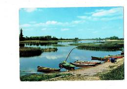 Cpm - Bords De Saône - Rendez-vous Des Pêcheurs - Photo R. Moisy 2433 - 1965 - Barque Bidon - Altri Comuni