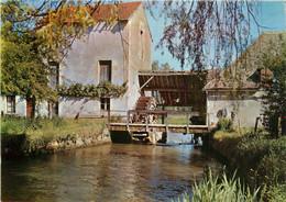 CPSM Environs De Cosne Sur Loire-Vieux Moulin      L385 - Cosne Cours Sur Loire