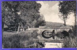 Carte Postale 21. Aisey-sur-Seine  La Promenade  Le Pont Des Troubles Très Beau Plan - Other Municipalities