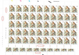 BUZIN 2426 RRR Feuille De 50  Pl 1 + Pl 2 09/01/1997 - 1985-.. Vogels (Buzin)