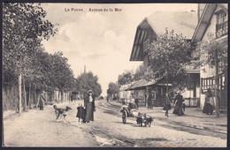 +++ CPA - DE PANNE - Avenue De La Mer - Animée - Attelage Chiens  // - De Panne