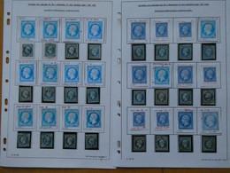 FRANCE ,plus De 400 Exemplaires Du N° 14 étudiés Par Un Spécialiste Qui A Relevé Des Anomalies - 1853-1860 Napoleone III