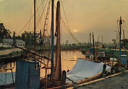 CAORLE-VENEZIA-PORTO-TRAMONTO-CARTOLINA VERA FOTOGRAFIA-VIAGGIATA IL 14-8-1968 - Venezia (Venedig)