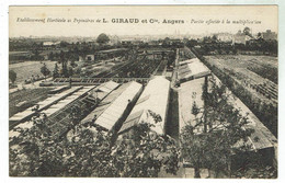ANGERS - L GIRAUD & Cie Horticulteur - Avis De Passage - Bon état - Angers