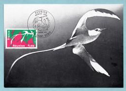 Carte Maximum 1977 - Réunion - YT 1914 - 974 Saint Denis - 1970-79