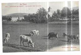 Lacaune Les Bains Paturages Près Lacaune - Otros Municipios