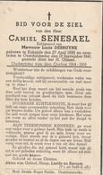 Oudstrijder 1914-1918, Camiel Senesael, Debruyne, Koksijde, Oostduinkerke - Andachtsbilder