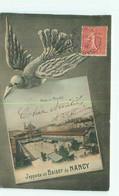 Cpa -    J ' Apporte Un Baiser  De Nancy -      Place Du Marché  , Oiseau       A558 - Nancy