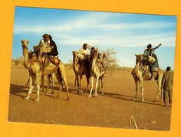 Mauritanie   Chameliers    Hadh Oriental  Edt   Trans-express  N° 10 - Mauritania