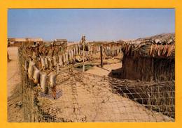 Mauritanie  Séchage Du Poisson Au Cap Timirist       Edt    Graphilito  N° - Mauritania