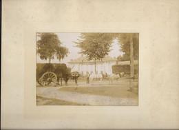 Photo 24x31, Vers 1890, ANTHONY, Haras De La Croix De Berny, Ferme...  Attelage... Animé - Luoghi