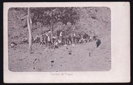 CPA  Serbie - Ouvriers De Vragné - Chemin De Fer -  1903 - Serbia