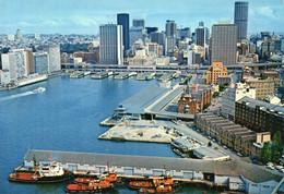 SYDNEY - Circular Quay And The City Skylin From Pylon Lookout - Sydney