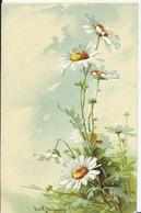 CARTE FANTAISIE - Illustration Catharina KLEIN - Carte Gaufrée - Marguerite - Klein, Catharina