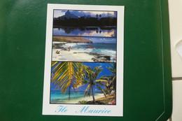 C13/ TAMARIN ILE PLATE POINTE AUX CANONNIERS ILE MAURICE AFRIQUE   DIMENSION CARTE 17X 12 TIMBREE - Maurice