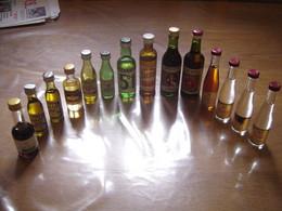 LOT DE 14 MIGNONETTES Pastis Duval Berger Ricard Pernod 51 Suze Dubonnet ALSACE - Miniatures