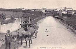 BIDART                  VUE PRISE DE LA ROUTE       ATTELAGE - Bidart