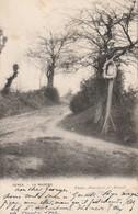 Genck / Genk : La Madone --- 1903 - Genk