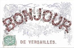Bonjour De VERSAILLES - Carte Avec Paillettes - Versailles