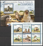 UC021 2009 UNION DES COMORES FAUNA ANIMAL SEALS LES OTARIES ANTARCTIQUE 1KB+1BL MNH - Altri