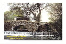 83 - Seillons Source D'Argens - Le Pont D'Arrosage - Autres Communes